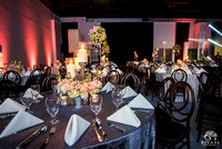 Mittali_Sumit_Reception_Decor_Details_Food_Ballroom_Bayou_at_Place_Houston_TX_009