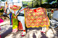 RS_Ceremony_Baraat_Photos_Omni_Barton_Creek_Resort_Austin_TX_005