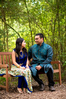 Downtown_Houston_Indian_Engagement_Photos_011