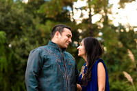 Downtown_Houston_Indian_Engagement_Photos_017