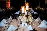 Mittali_Sumit_Reception_Decor_Details_Food_Ballroom_Bayou_at_Place_Houston_TX_011